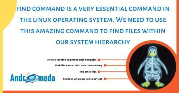 Linux Commands: The easy way